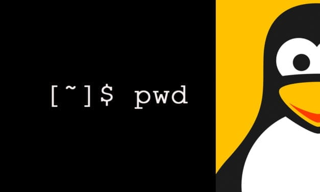 4 examples of Linux PWD command for beginners